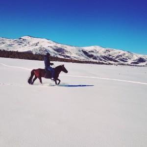 Paardrijden in de sneeuw