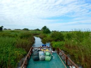 Battambang boot